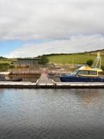 Inish Turk Beg island for just £2.85 million