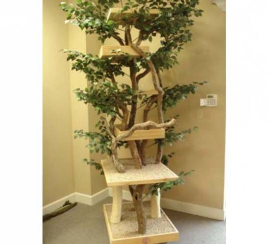 Custom Special Needs Trees