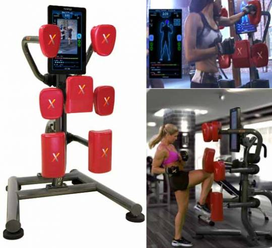 The Nexersys Commercial Model is for places like the local gym which has multiple users