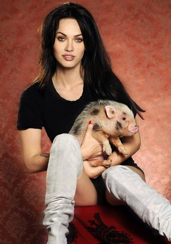 Megan Fox's home is a virtual animal house with a wide range of pets.