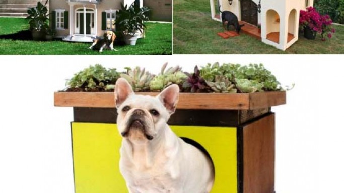 Luxury doghouses custom built for the world's most loved dogs