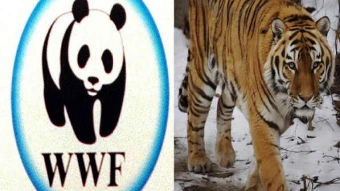 World Wildlife Fund in India