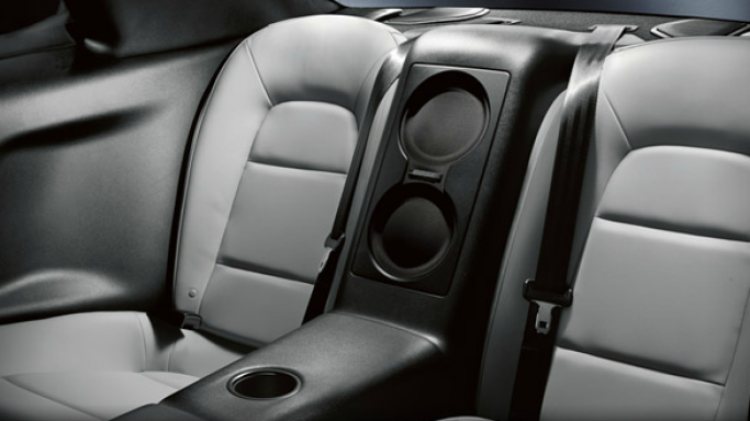 Leather appointed back seats